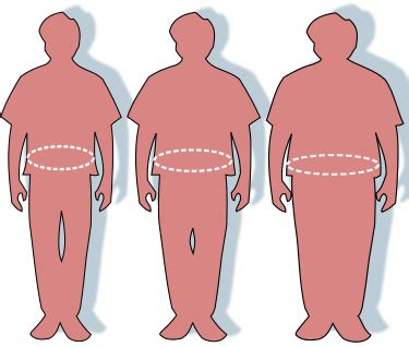 Anorexia and obesity essay